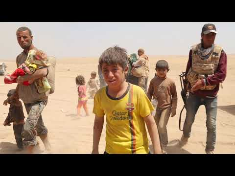 Sinjar:14 Days that Saved the Yazidis from Islamic State
