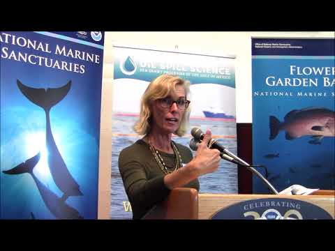 Laura Engleby, Restoration for marine mammals in the Gulf of Mexico