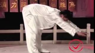 Гимнастика цигун для позвоночника обучающее видео