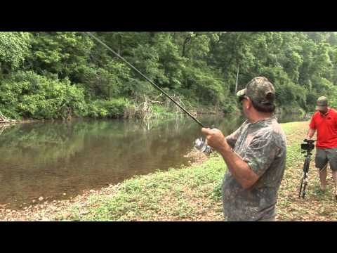 Middle TN Creek Fishing