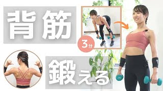 【毎日3分】自宅でできる背筋トレーニング!ダンベルを使って背中を引き締めよう