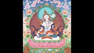 Lama Tashi- Tara Mantra (Tibetan throat chanting)