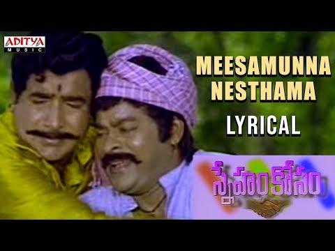 Meesamunna Nesthama Lyrical || Sneham Kosam Movie Songs || Chiranjeevi, Meena || VijayaKumar