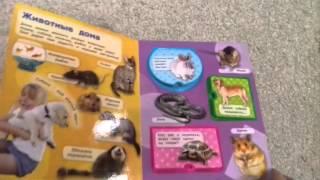 Книга с вырубкой Домашние животные Росмэн (Rosman)