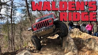 We Conquer WALDEN'S RIDGE in Our Jeep Wrangler JLU Rubicon!