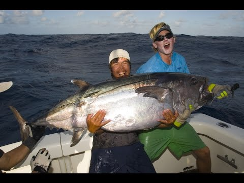 Nomad Sportfishing - Massive Dogtooth Tuna By Mr Mogi