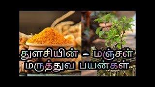 Benefits of Tulsi & Turmeric in Tamil | Turmeric Milk, Imunity | Healthy Life - Tamil.