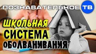 Система образования против здоровья детей  Часть 2 (Познавательное ТВ, Владимир Базарный)