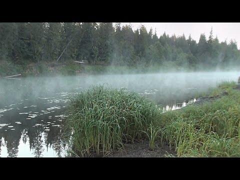 рыбалка афанасьевский район