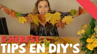 5 herfst tips en DIY