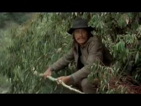 Red Sun  Charles Bronson vs. Toshiro Mifune