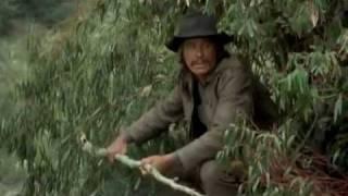 Red Sun - Charles Bronson vs. Toshiro Mifune
