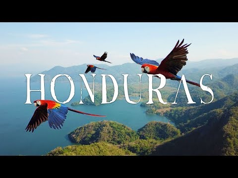 Honduras Travel Video | WANDR (Roatan, Copan, Lake Yojoa, Macaws, and MORE...)