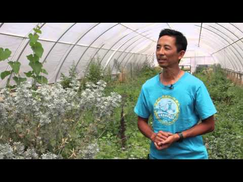 Thomas Hill Organics Presents Mt. Olive Organic Farm
