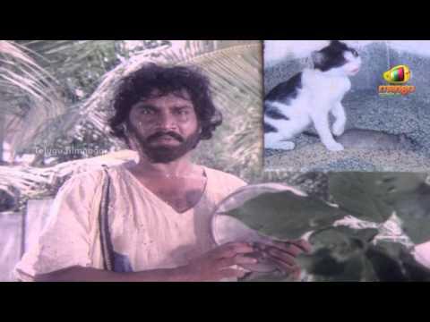 Chattaniki Kallu Levu Movie Songs  Chattaniki Kallu Levu Song  Chiranjeevi, Madhavi, Lakshmi