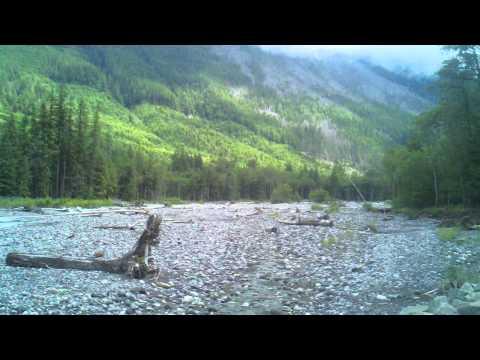 Carbon River, Mount Rainier WA