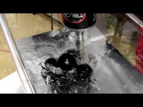 Glassware Cleaning & Polishing