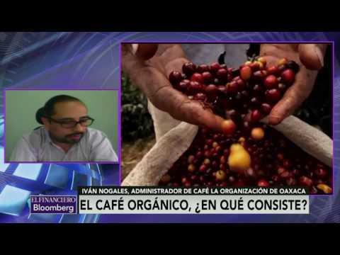 México es el principal productor de café orgánico en el mundo: Iván Nogales