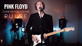 Pink floyd - comfortably numb full cover pulse version