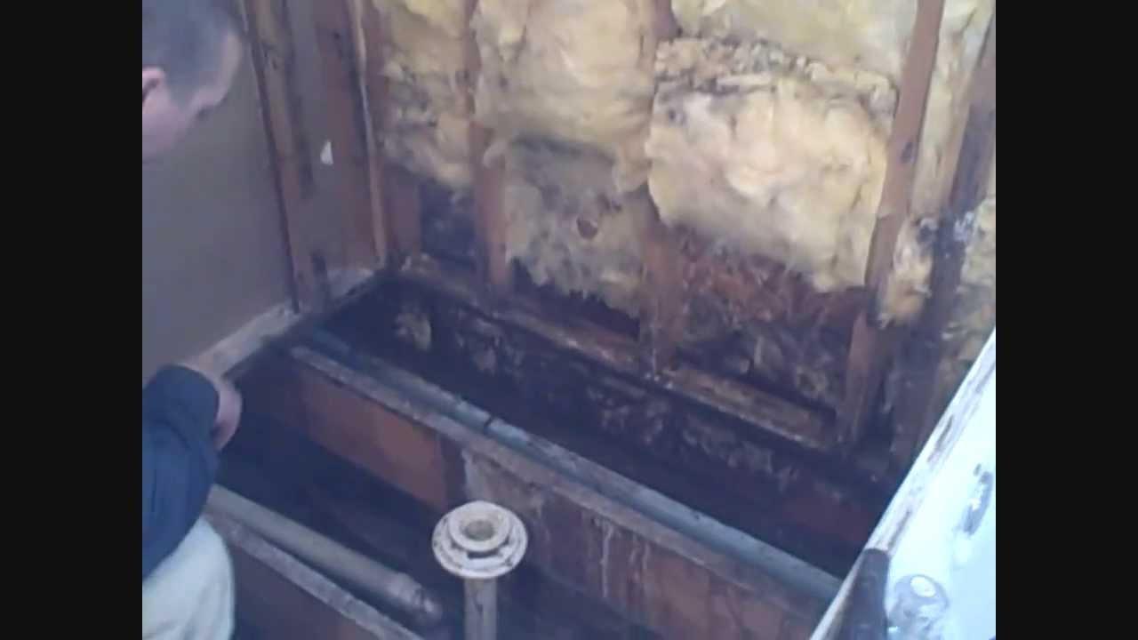 Tile Shower Waterproofingwmv  YouTube