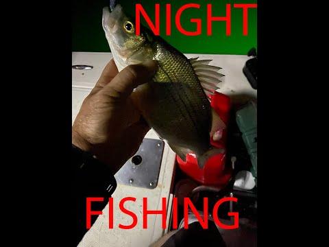 LiveScope Night Fishing Lake Ray Hubbard