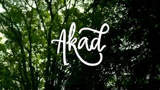 Payung Teduh - Akad (Official Photo Album)