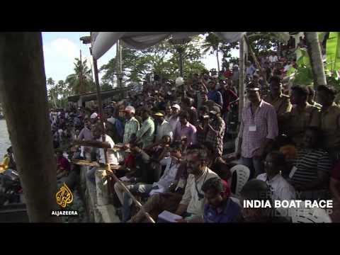On Al Jazeera: The disappearing bee, India's boat race, a new app's virtual wildlife safari