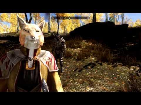 Скайрим 5 Мод Foxe