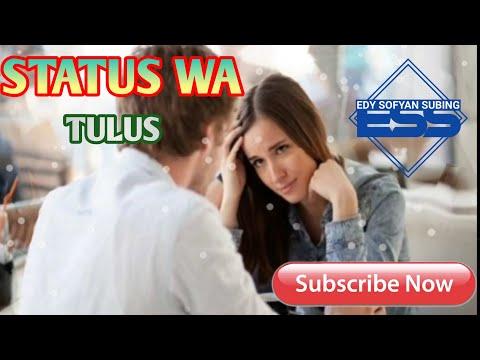 STATUS WA // LAGU TULUS (RADJA)