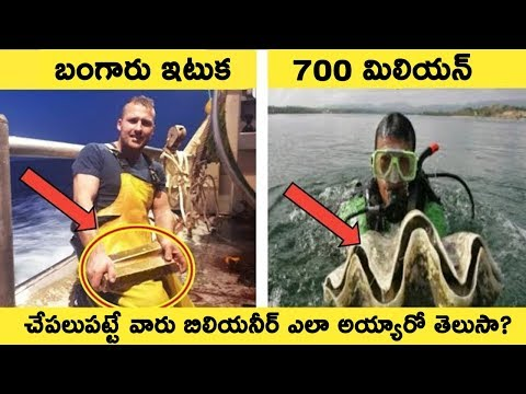 Lucky Fishermen Who Caught Things That Made Them Rich || T Talks