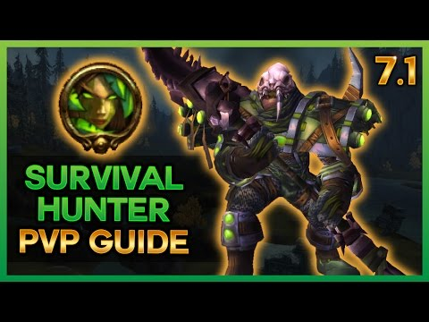 THE NEW 7.1 SURVIVAL HUNTER PVP GUIDE - WOW LEGION