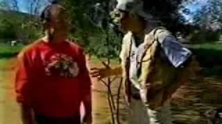 Nhk Network Of Tokyo Interviews Dalmatian Lover