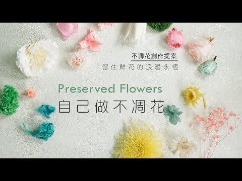 在家就能做出不凋花!質感就像真花一樣柔軟,顏色還能自己調配!