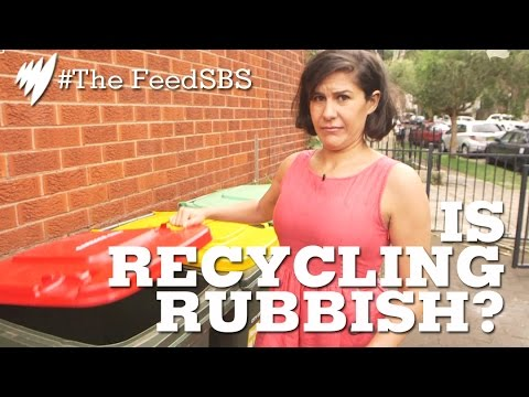 Is Recycling Rubbish? I The Feed