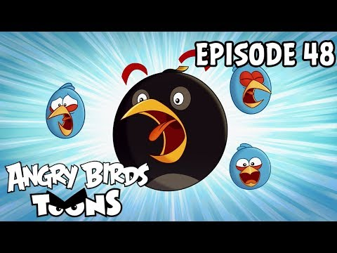 Angry Birds Toons | Shrub It In - S1 Ep48