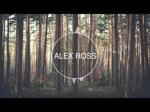dj snake middle. DJ Snake feat Bipolar Sunshine - Middle (Alex Ross Remix) слушать онлайн песню