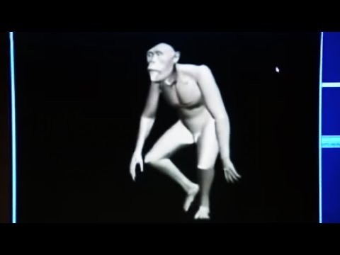 Animated reconstruction of evolution - BBC science
