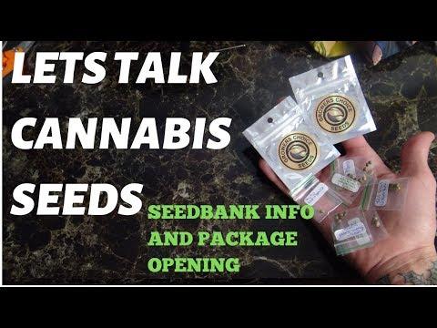 Cannabis Seedbank Info & Package Opening