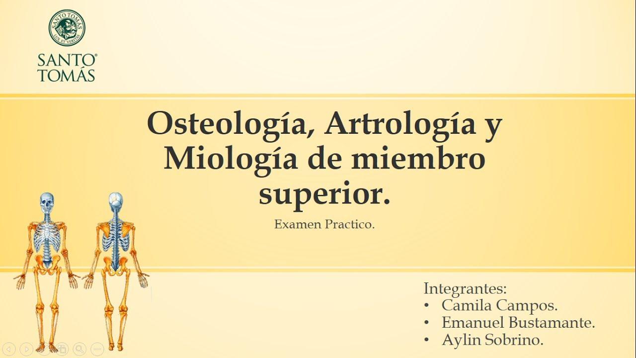 Examen Anatomía. Osteologia, Artrologia y Miologia de Miembro ...