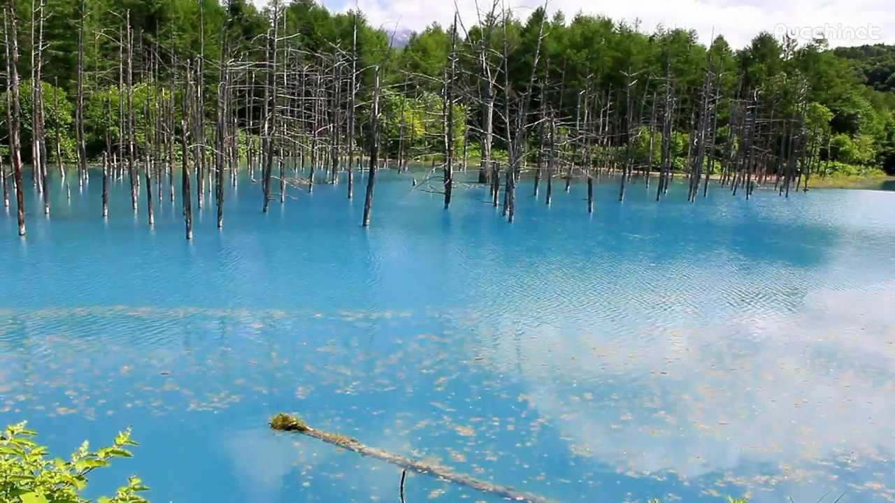青い池 @北海道美瑛町 Blue Pond in Biei Hokkaido