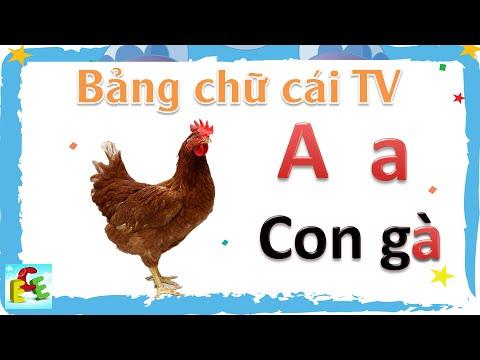 Dạy bé học bảng chữ cái tiếng Việt | trẻ tập nói đọc chữ cái a ă â mới nhất | Giáo dục trẻ em ECE 1