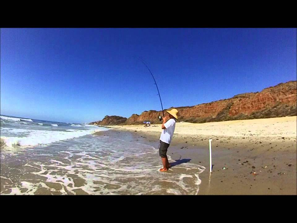 Surf fishing biggest corbina i have ever seen youtube for Surf fishing northern california