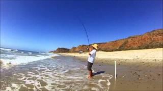 Video Surf Fishing - Biggest Corbina I have ever seen. download MP3, 3GP, MP4, WEBM, AVI, FLV Desember 2017
