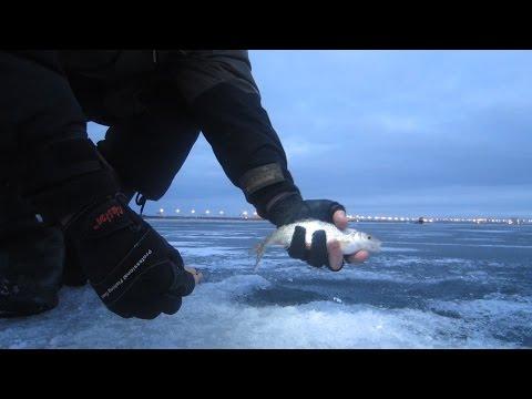 ловля плотвы зимой на финском заливе снасти