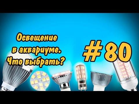 #80 ЛАМПЫ ДЛЯ АКВАРИУМА. Ч 2.Lighting In The Aquarium. Lamp For Aquarium. P 2.