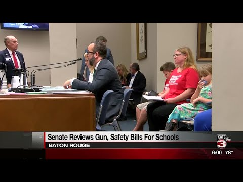 Senate committee defers bill that would have allowed more guns near schools