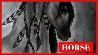 Como dibujar un caballo aborigen-how to draw a horse   Johan David Art
