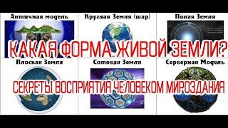 Какая Форма Живой Земли: Плоская-Шар-Полая-Многомерная? / Секреты Восприятия Человеком Мироздания