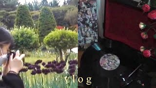 vlog , 빈티지 캠코더 브이로그 • 로제 Lp • …