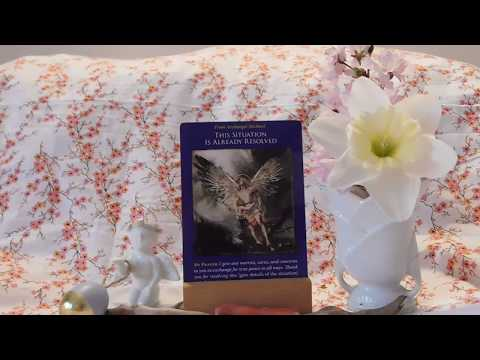 Daily Angel Oracle Card Reading